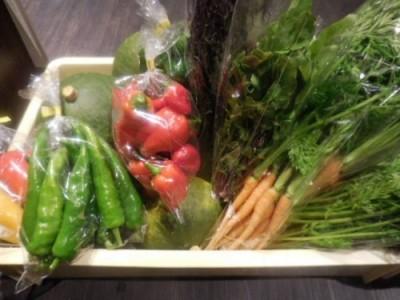 新鮮なお野菜たち♪